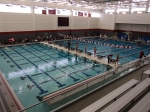 1/29: The new pool. This is very great. High dive, 0 entry (walk-in), movable bulkhead, lots of seating area.